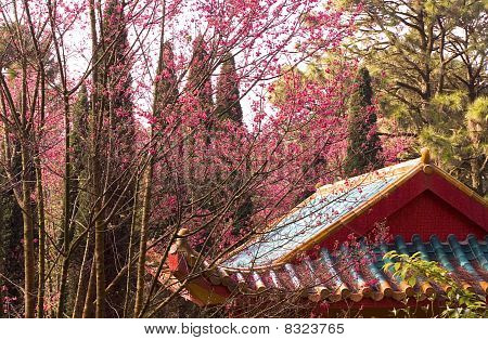 Old Beautiful Priest's House In China