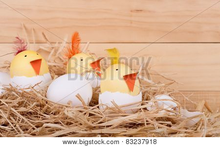 Easter Egg Chicks In A Nest