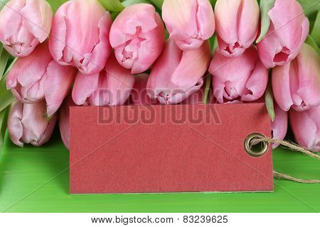 Tulips Flowers In Spring, Birthday Or Mother's Day With Empty Tag And Copyspace
