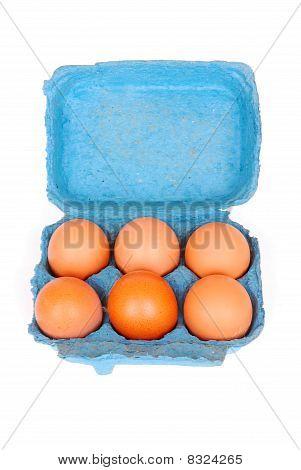 Eggs in blue box