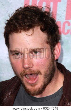LOS ANGELES - FEB 18:  Chris Pratt at the