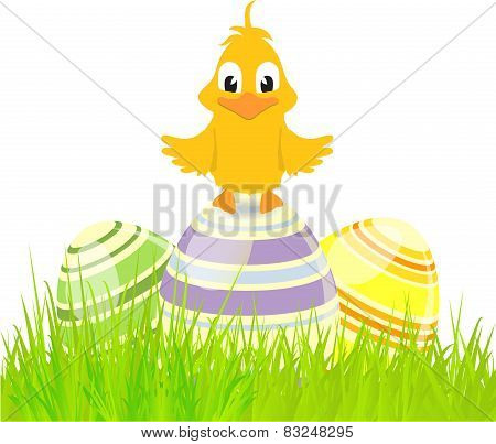 Eggs And Chick On Grass
