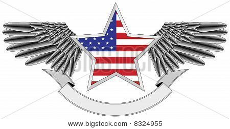 winged star with the U.S. flag