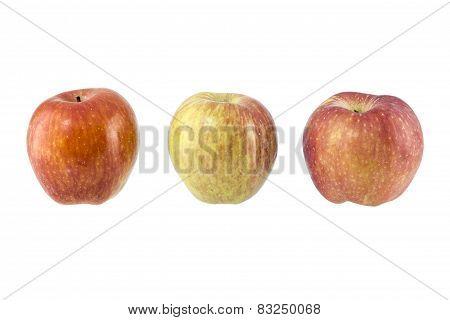 Apple On White Background