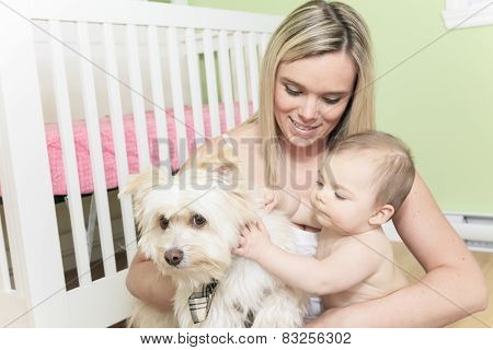 A Baby and Dog playing in the bedroom