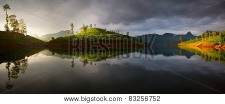 Panorama of the tea plantations at sunrise with reflection in the lake. Adam's peak - conical mountain on the horizon at right side. Sri Lanka