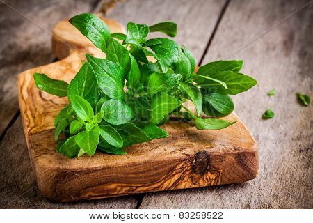 Bunch Of Fresh Organic Basil With Drops In Olive Cutting Board
