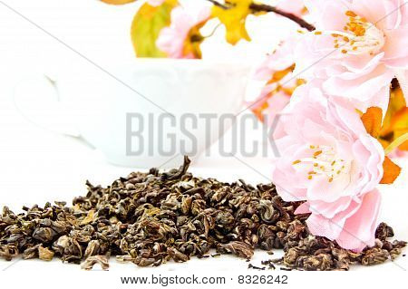 leaves of green tea on white isolated background