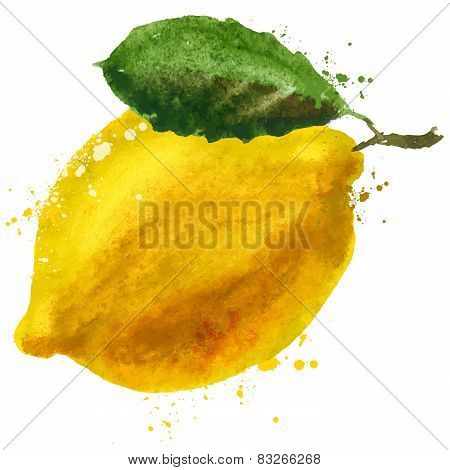 lemon vector logo design template. fruit or food icon.