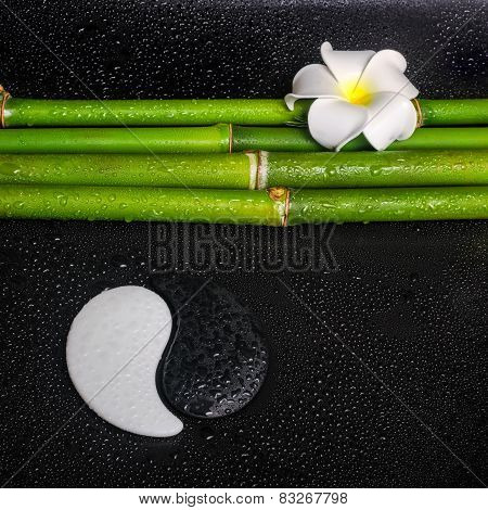 Beautiful Spa Concept Of Frangipani Flower, Symbol Yin Yang And Natural Bamboo With Leaves On Zen Ba