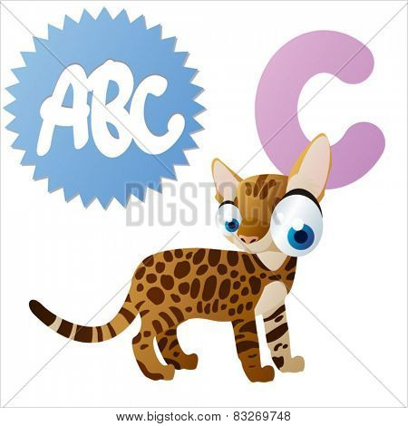 vector animals cartoon abc: C is for cat