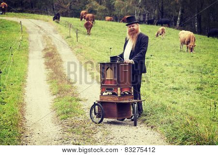 fulvous man with organ outdoors