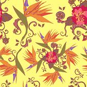 picture of bird paradise  - bird of the paradise flowers seamless pattern background - JPG