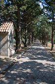picture of filerimos  - Calvary avenue walk from Ialyssos monastery on the Greek island of Rhode - JPG