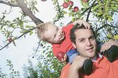 foto of piggyback ride  - Father giving piggyback ride to his son - JPG