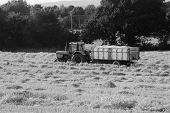 picture of tractor-trailer  - Tractor with a trailer full of grain in the field at harvest time  - JPG