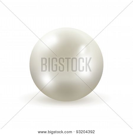 White Pearl Vector Illustration