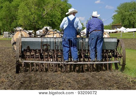 Farmers seeding grain with a horse pulled drill