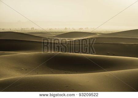 Gold Dunes