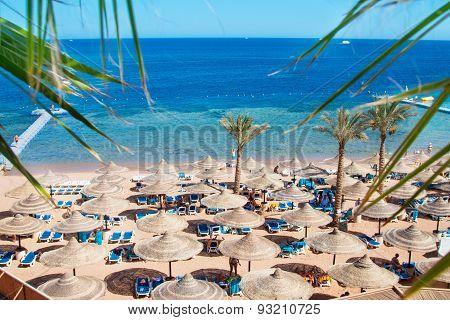 Red Sea Beach