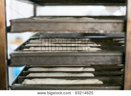 Tray Rack Of Soft Rolls Dough