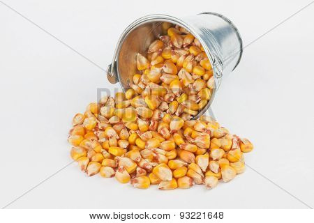 Corn Grains Spilling Out Of Bucket