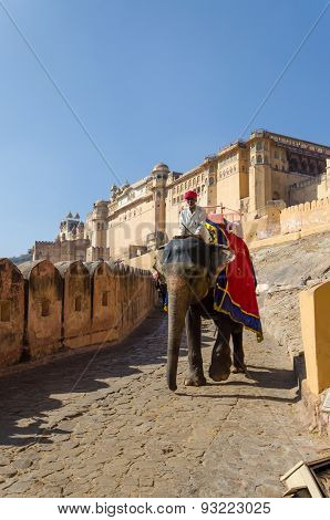Jaipur, India - December 29, 2014: Decorated Elephant At Amber Fort In Jaipur.