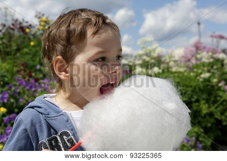 Child Licks Cotton Candy