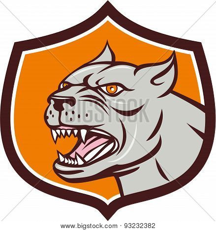 Pitbull Dog Mongrel Head Shield Cartoon