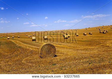 straw stack