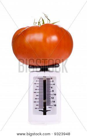 Big Tomato On Kitchen Scale