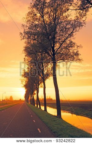 Country road in the Netherlands by twilight