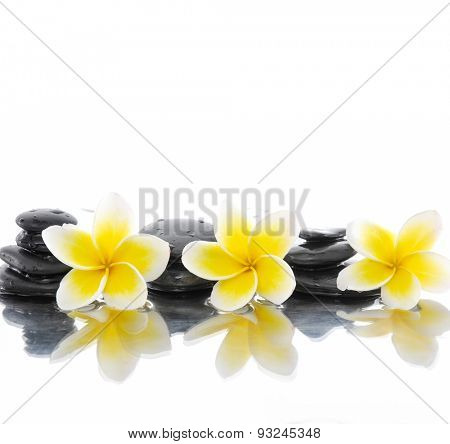 stacked wet stones with three frangipani