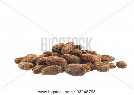 Cacao Beans Isolated Over White