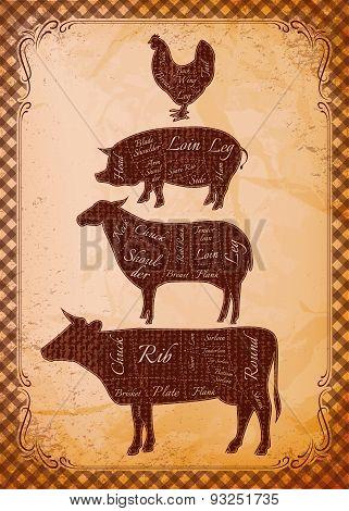 Diagram Cut Carcasses Of Chicken, Pig, Cow, Lamb