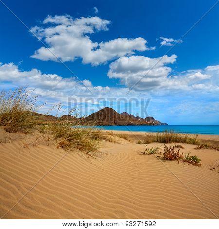 Almeria Playa de los Genoveses beach dunes in Cabo de Gata Spain