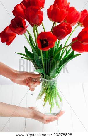 Tender Hands Hold Tulips Bouquet, Selective Focus
