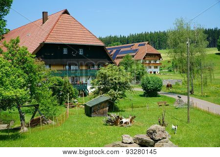 Two Country Houses In The Black Forest