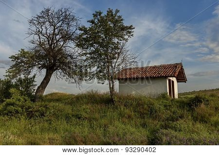 Beautiful landscape with green tree and old chapel