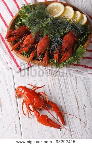 Crayfish With Fresh Herbs Close-up. Vertical Top View