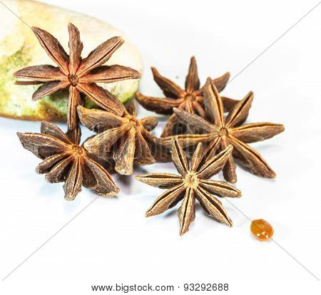 The Star Anise On White Background.