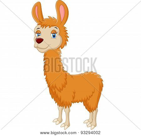 Llama cute cartoon