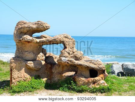 Coral Reef Sculpture