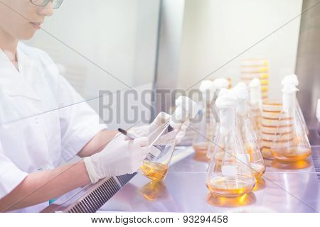 Life science researcher grafting bacteria.
