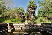 picture of vihara  - Polonnaruwa ruin was the second capital of Sri Lanka after the destruction of Polonnaruwa - JPG