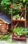 stock photo of dog-house  - beautiful summer designed garden with dog house and wooden rack - JPG