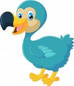 picture of dodo  - Vector illustration of Cartoon dodo bird isolated on white background - JPG