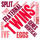 image of zygote  - Twins word cloud on a white background - JPG