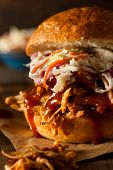 pic of pulling  - Homemade Pulled Chicken Sandwich with Coleslaw and Fries - JPG