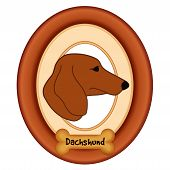 stock photo of dachshund dog  - Dachshund dog portrait profile in cherry wood mat frame - JPG
